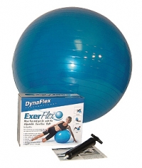 Replacement Ball for DFX Fit Chair
